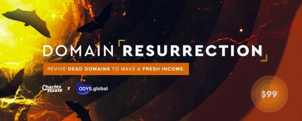 Domain Resurrection: SEO Course (2020) 1